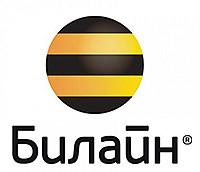 Ведущий оператор сотовой связи России – компания Билайн